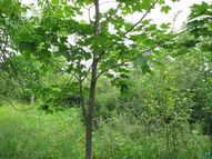 80a Mink Ranch 80 Acres At Woodland Foothills Lutsen MN, 55612