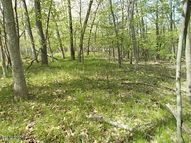 Lot 28 Division Newaygo MI, 49337