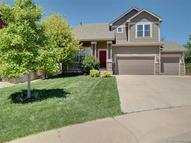 1728 Green Wing Drive Johnstown CO, 80534