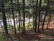 Address Not Disclosed Forestport NY, 13338