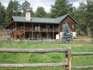 527 Willow Park Drive South Fork CO, 81154