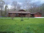 460 Holly Meadows Road Parsons WV, 26287