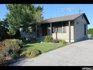 10448 North 11750 West Thatcher UT, 84337