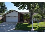 7 Pintail Place Safety Harbor FL, 34695