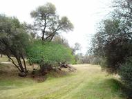 0-4.86 Ac Enchanted Oaks Drive Coarsegold CA, 93614