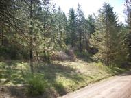 2529 Hall Creek Rd Inchelium WA, 99138