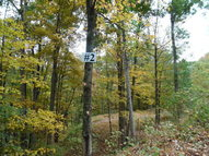 Lot 2 Raystown Reach Huntingdon PA, 16652