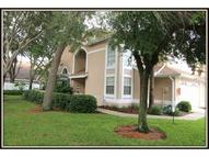 3061 Overlook Place Clearwater FL, 33760
