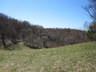 Tbd Whitetop Gap Road (Lot 1) Whitetop VA, 24292