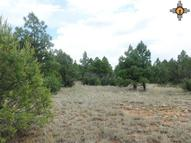 5.3 Ac Old Rancho Road Mineral Hill Area Las Vegas NM, 87701