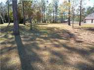Lot 4  Westerlee Dr East Leesburg GA, 31763