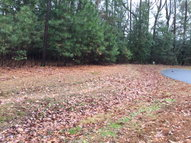Lot 6 Eaglet Lane Atlantic VA, 23303