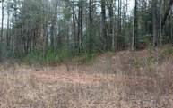 40 Bartox Drive Lot 158 Ellijay GA, 30540