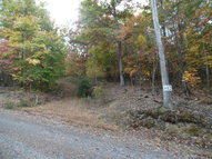 Lot 12 Raystown Reach Huntingdon PA, 16652
