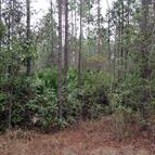 Lot 183 North West 3rd Ave Palatka FL, 32177