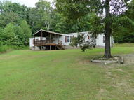 238 County Road 64 Riceville TN, 37370