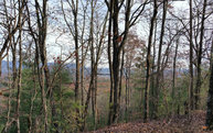 Lot44 Skyridge Estates Lot 44 Ellijay GA, 30540
