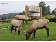 710 Moraine Ave Estes Park CO, 80517