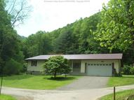 732 Swaying Sycamore Street Lake WV, 25121