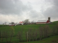 1264 Maple Valley Rd Meyersdale PA, 15552
