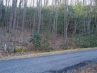 Lot 28 Kindling Trail 28 Horse Shoe NC, 28742