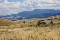 Lot 3 Visions  West Tbd Cokedale Road Livingston MT, 59047