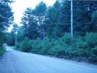 Lot 063000 Fox Lane East Wakefield NH, 03830