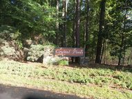 0 Red Fox Trail Chapin SC, 29036