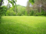 Lot 12 Meadowbrook Lane Chelsea VT, 05038