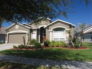 6009 Martinglade Place Lithia FL, 33547