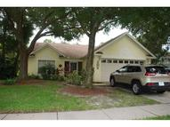1123 Bloom Hill Avenue Valrico FL, 33596