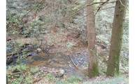 Lot Laurel Creek Lot 55 Cherry Log GA, 30522