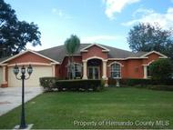 3051 Waterfall Dr Spring Hill FL, 34608