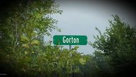 Lot # 11 Gorton Road Middleville MI, 49333