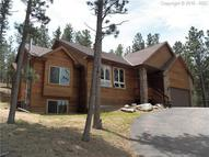 1605 Masters Drive Woodland Park CO, 80863