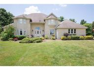 61 Majestic Ct Canfield OH, 44406