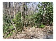 27 Rhododendron Road Black Mountain NC, 28711