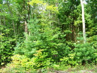 Lot 40 Pine Grove Estates Lerona WV, 25971