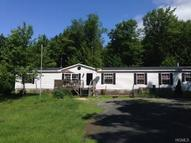 265 Old Tacy Road Swan Lake NY, 12783