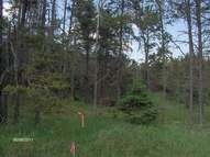 Lot 9 Plum Lake Dr Sayner WI, 54560