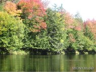 Campground Road Forestport NY, 13338