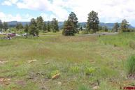 118 Seminole Pagosa Springs CO, 81147