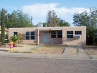 1108 Cauthen Ln Alamogordo NM, 88310
