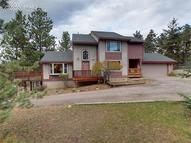 2020 Valley View Drive Woodland Park CO, 80863