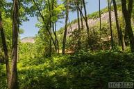 Lot 26 East Valley Drive Sapphire NC, 28774