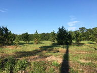 00 Isbell Rd Fort Mitchell AL, 36856