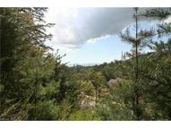 74 Hawtree Court Lot 264/263 Weaverville NC, 28787
