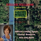5 Arborea Dr Indian Lake Estates FL, 33855