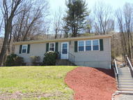 310 Foothills Dr. W Drums PA, 18222