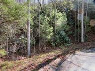 Lot 19 Cherrywood Drive 19 Pisgah Forest NC, 28768